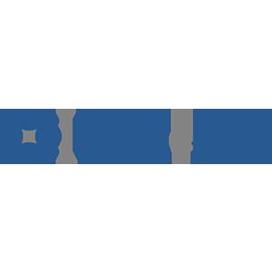 BridgEgypt